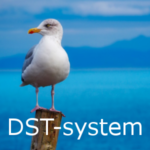 DST-system