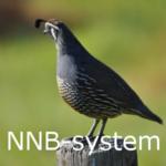 NNB-system