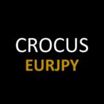 CROCUS_EURJPY_EB