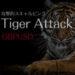 Tiger Attack GBPUSD/M15